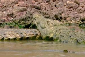FOTOS: Los secretos del Nilo