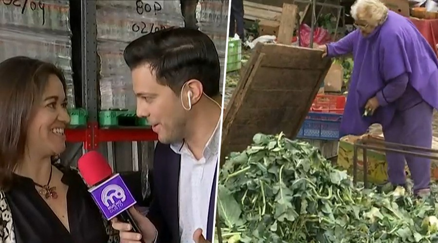 Organización busca revertir los 3.700 millones de kilos de comida que se botan al año en Chile