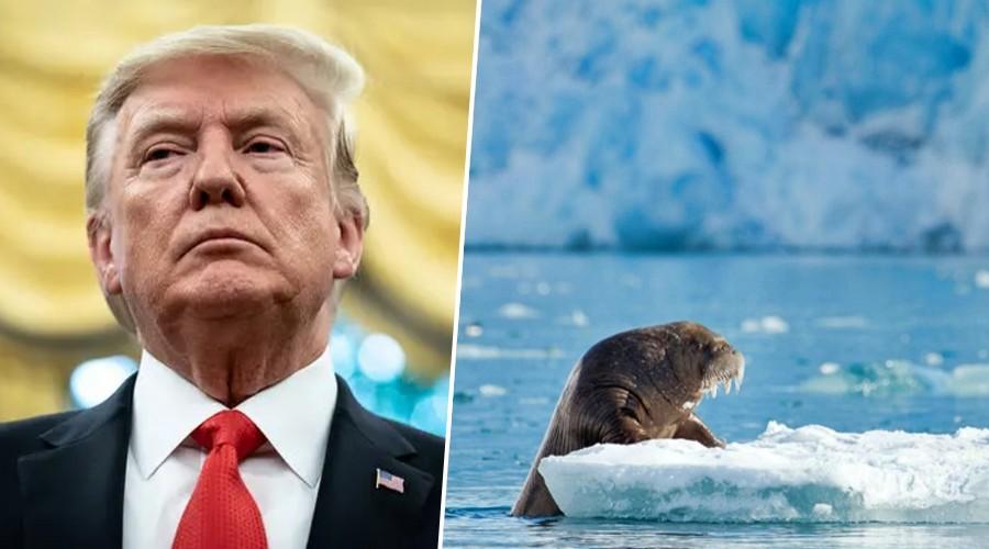 Trump, Putin y Bolsonaro: Sus argumentos para no enfrentar la crisis climática