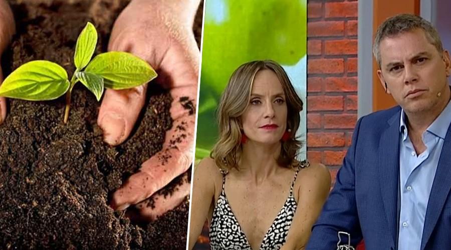 Mucho Gusto se compromete a ser el primer matinal verde de Chile