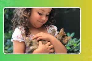 Nala: una gatita que llena todos los lugares con su ternura