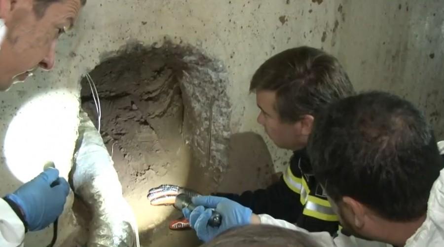 Delincuentes arman túnel para robar un banco en Concón