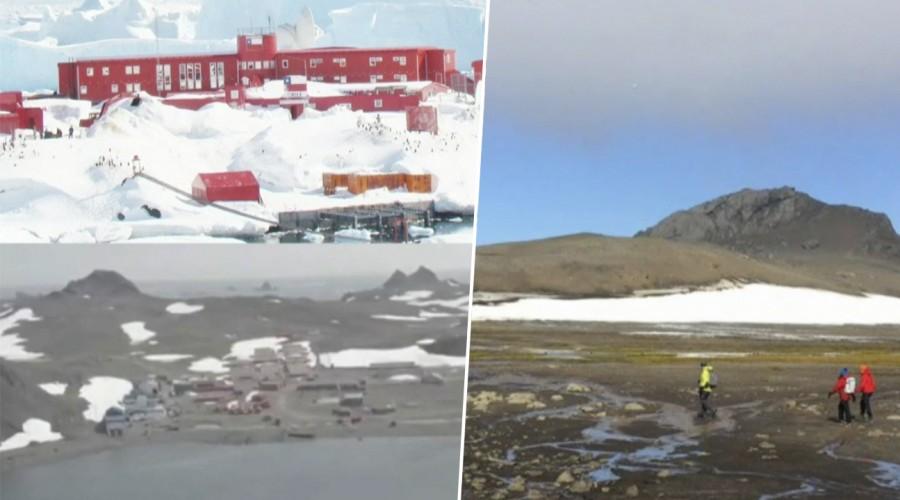 Alerta en la Antártica: Temperaturas sobrepasaron los 20 grados