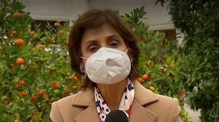 Subsecretaria Paula Daza explica nueva metodología del Minsal para contabilizar contagios de Covid-19