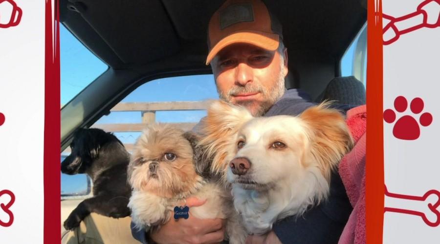"""Paulo Brunetti nos cuenta su experiencia con sus tres perritos en """"Conexión única con mis mascotas"""""""
