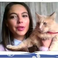 """Ángeles Araya nos muestra a su gatita """"Julieta Shakespeare Araya"""" en """"Conexión única con mis mascotas"""""""