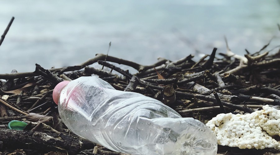 """Doctor en biotecnología: """"Ni siquiera el 20% del plástico que generamos se recicla"""""""