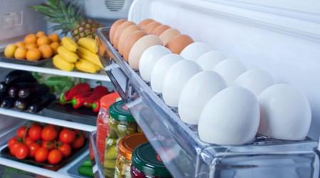 Mantén los alimentos a baja temperatura para evitar su descomposición y aparición de bacterias