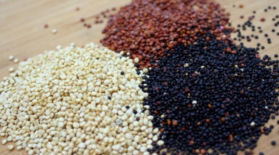 El aporte nutricional de la quínoa blanca, roja y negra es el mismo