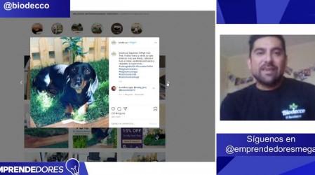 Biodecco: Un emprendimiento que busca conectar a tus mascotas con la naturaleza