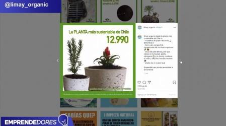 Peluquería, cocina y productos orgánicos: Conoce a tres nuevos emprendimientos en Pymes and The City