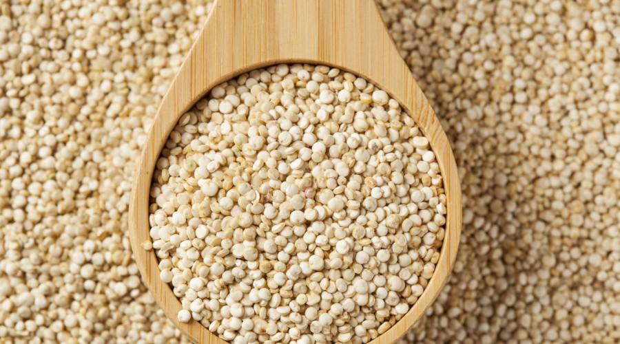 La quinoa debe ser lavada siempre antes de prepararla