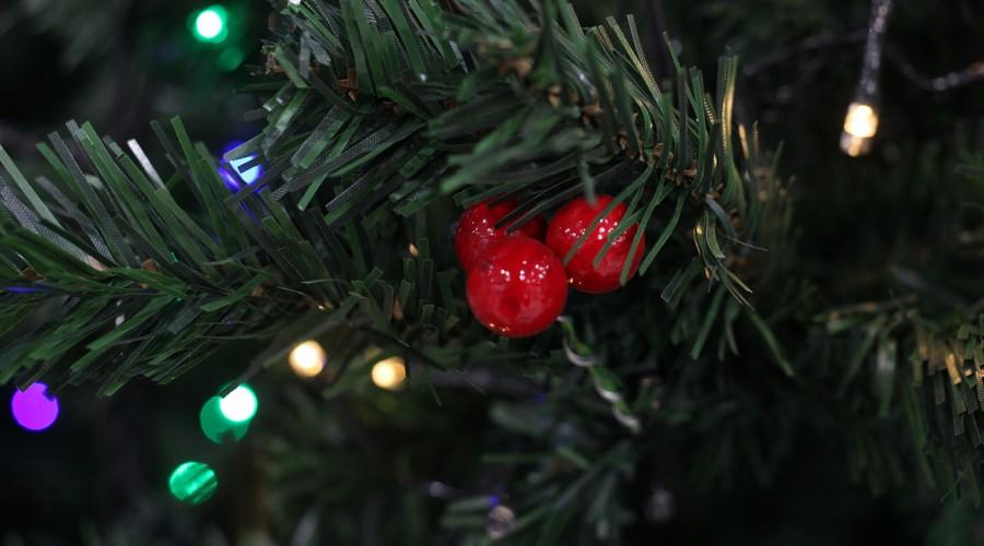 Aforo limitado y cordones sanitarios: Conoce el plan de Navidad y Año Nuevo del Gobierno