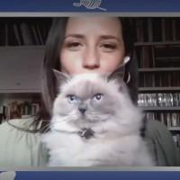 Conexión Única con tus Mascotas: Andrea Arístegui nos presenta a su gata Ami