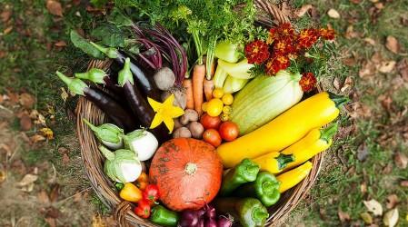 Nutricionista aconseja sobre cómo tener una alimentación saludable y cuidar al planeta