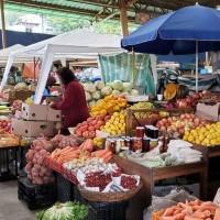 Elegir frutas y verduras de ferias libres contribuye a la disminución de gases contaminantes