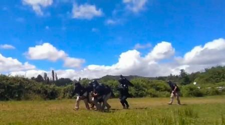Muere funcionario de la PDI en operativo antinarcóticos en Temucuicui