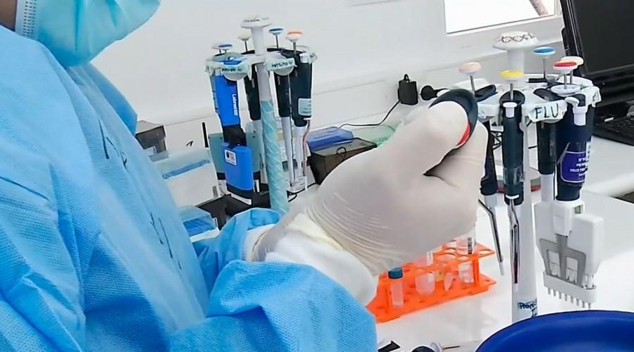 Cepa británica de coronavirus: Cuatro casos en La Pintana y 15 en todo Chile