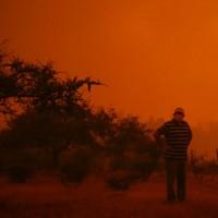 Incendio forestal en Quilpué: Levantan toque de queda en provincia de Marga Marga