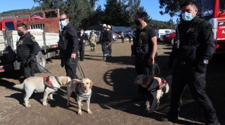 Caso Tomás Bravo: PDI realiza diligencias con perros adiestrados en la casa del menor