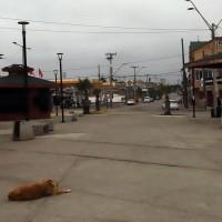 Revisa el listado de las comunas que actualmente están en Cuarentena