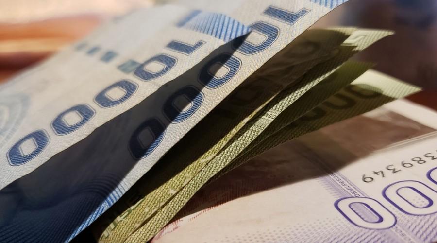 Te contamos si tienes bonos sin cobrar: Revisa sólo con tu RUT