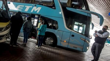 Bono para Transportistas: Te contamos cómo acceder a este aporte de $500 mil