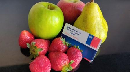 Implementan sistema de delivery para la tarjeta Junaeb:  Conoce los comercios donde puedes comprar