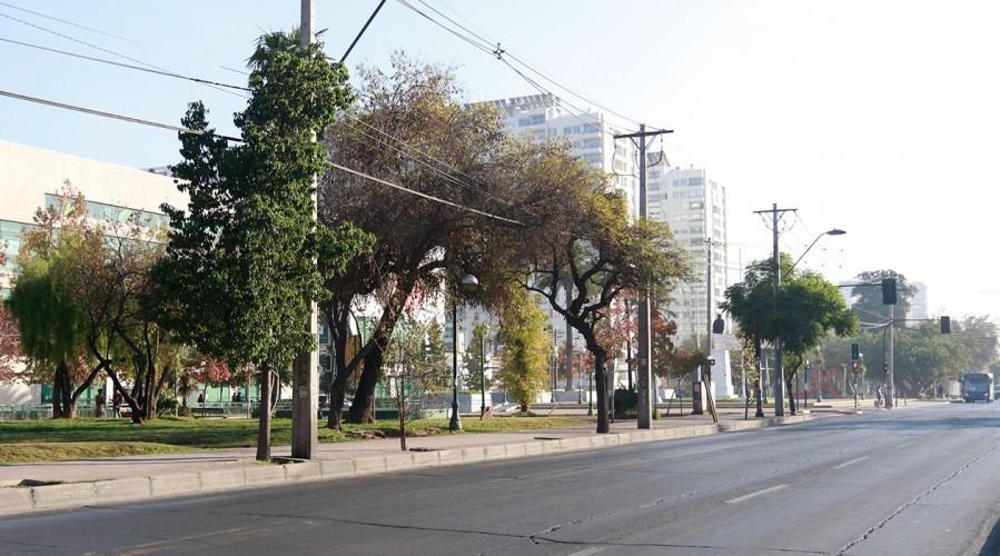 Santiago sale de Cuarentena: Revisa las otras comunas de la Región Metropolitana en Transición