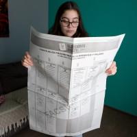 Elecciones 2021: Conoce cómo serán las papeletas de las votaciones de este fin de semana