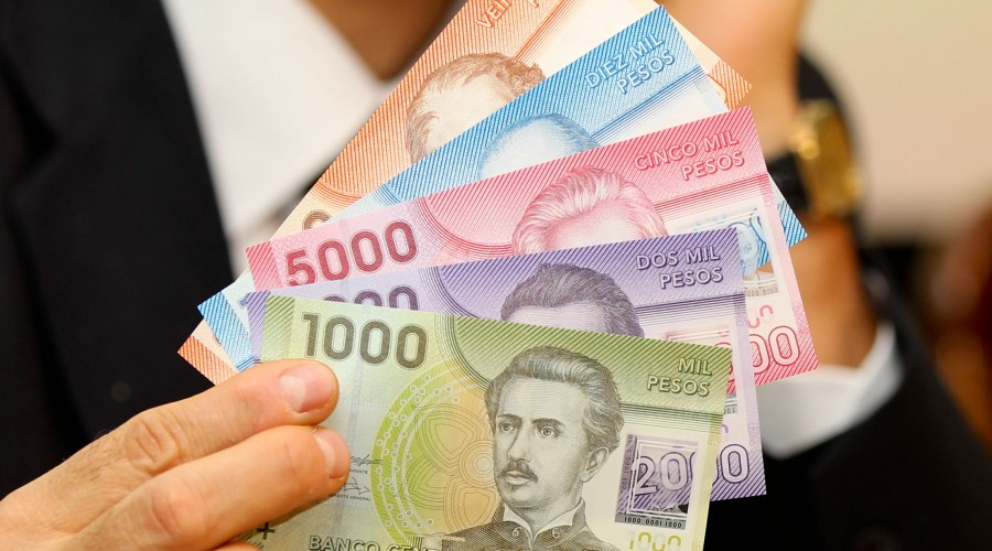 Aporte monetario de $200.000: Mañana termina el plazo para postular al Subsidio Protege