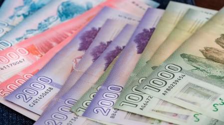 Conoce si tu hogar podrá recibir más de un pago mensual del Ingreso Familiar de Emergencia Universal