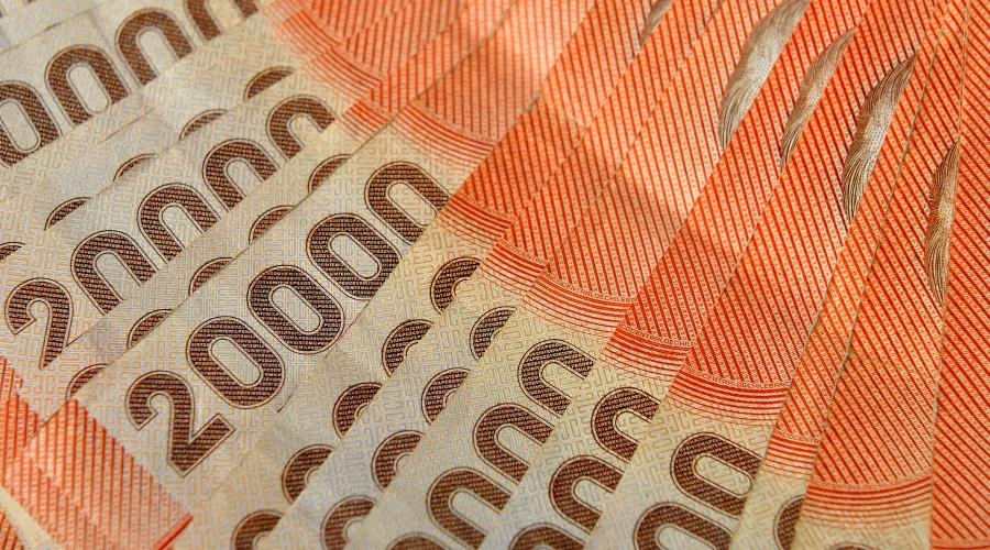 IFE Universal desde los $177 mil: Revisa cuándo inician los pagos del bono en julio