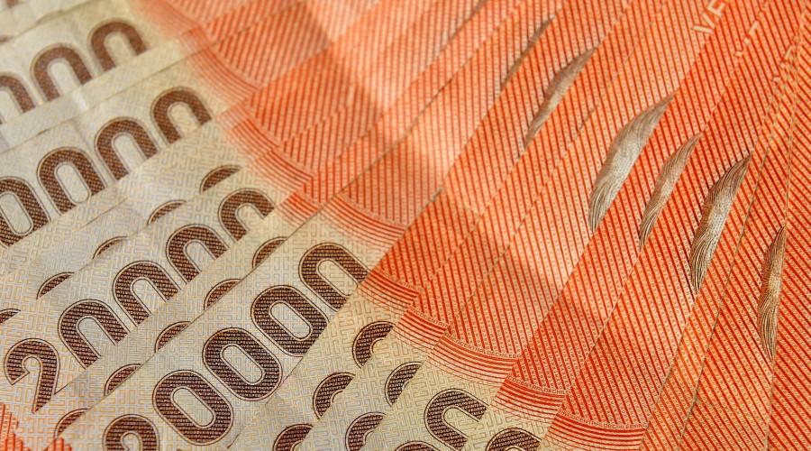 Comienzan pagos del IFE retroactivo de junio: Revisa si te corresponden estos montos
