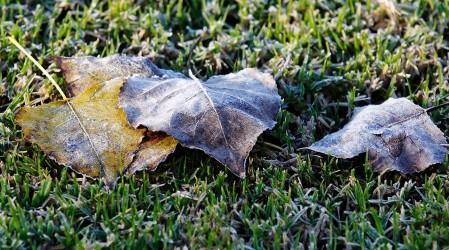 Alerta de heladas en 10 regiones: Temperaturas llegarán hasta los -4°C en algunas zonas del país