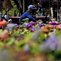 ¡Llega la primavera!: Revisa el pronóstico de las altas temperaturas para esta semana
