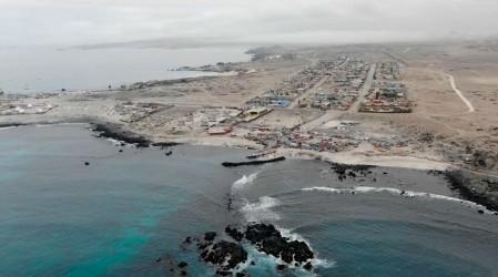 """""""Las ballenas se dejan de reproducir"""": Representante de Oceana advierte posible impacto ambiental de Dominga"""