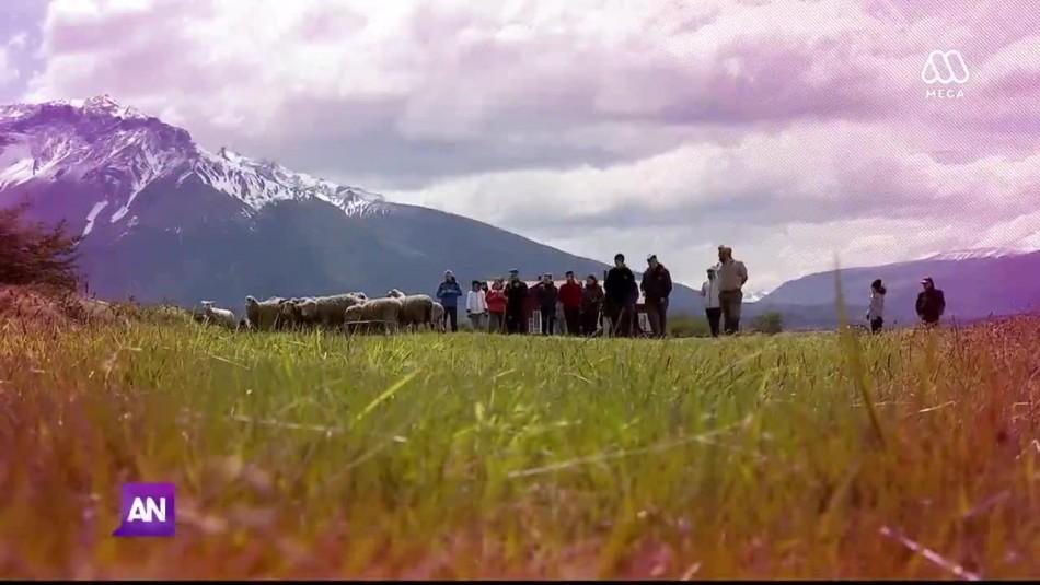 5 Días 4 Noches: Puerto Natales, la joya de la Patagonia