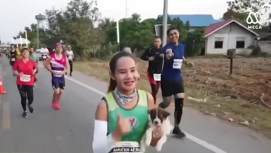[VIDEO] El noble gesto de una maratonista que adoptó un perro en plena competencia