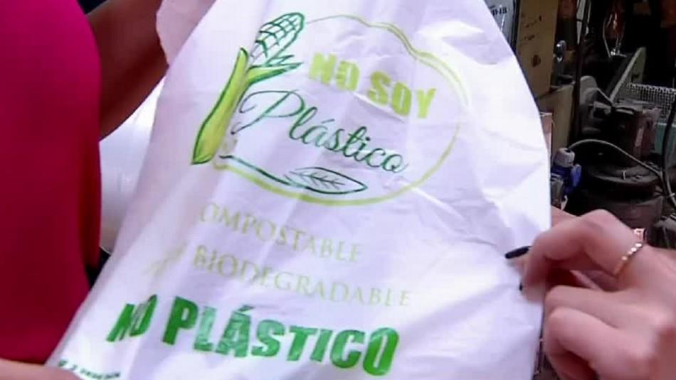 Las alternativas que podrían reemplazar a las bolsas plásticas tras entrada en vigencia de la ley