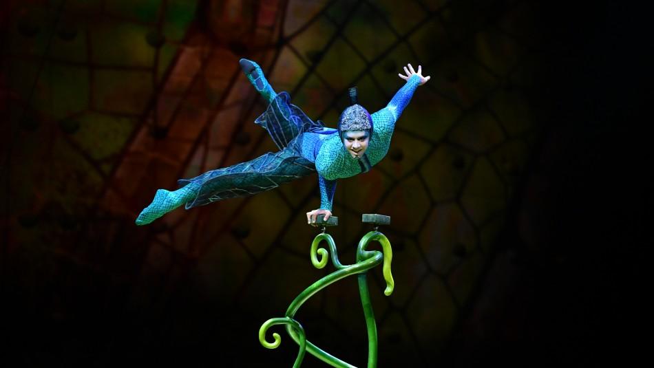 OVO / Cirque du Soleil
