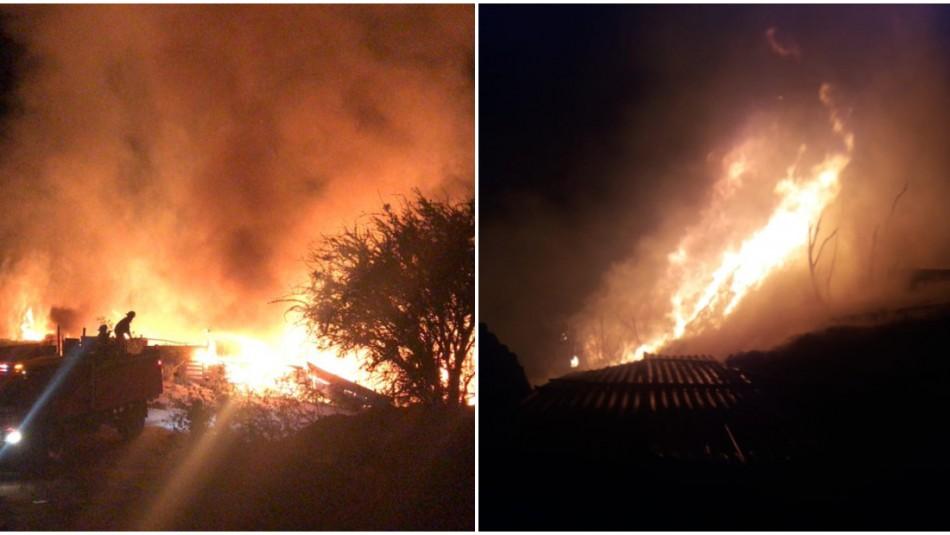 [VIDEO] Incendio Forestal afectó el límite entre las comunas de Quilpué y Viña del Mar