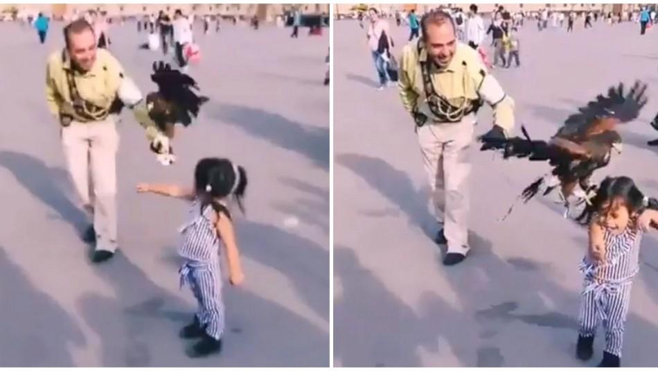 [VIDEO] Niña queda aterrada luego de que un águila intentara