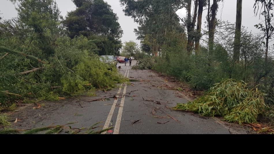 La tromba causó estragos en Chanco / Municipalidad de Chanco.