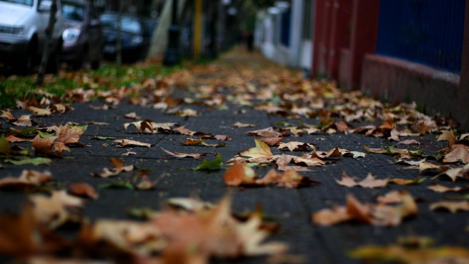Temperaturas bajo cero en Santiago: Revisa el pronóstico del tiempo para los próximos días