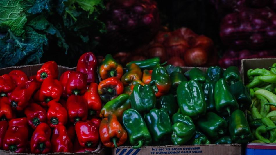 FAO revela que un 3,4% de la población en Chile tiene inseguridad alimentaria