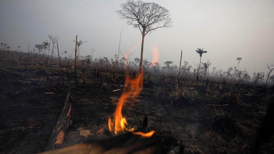 Fuego en la Amazonía.