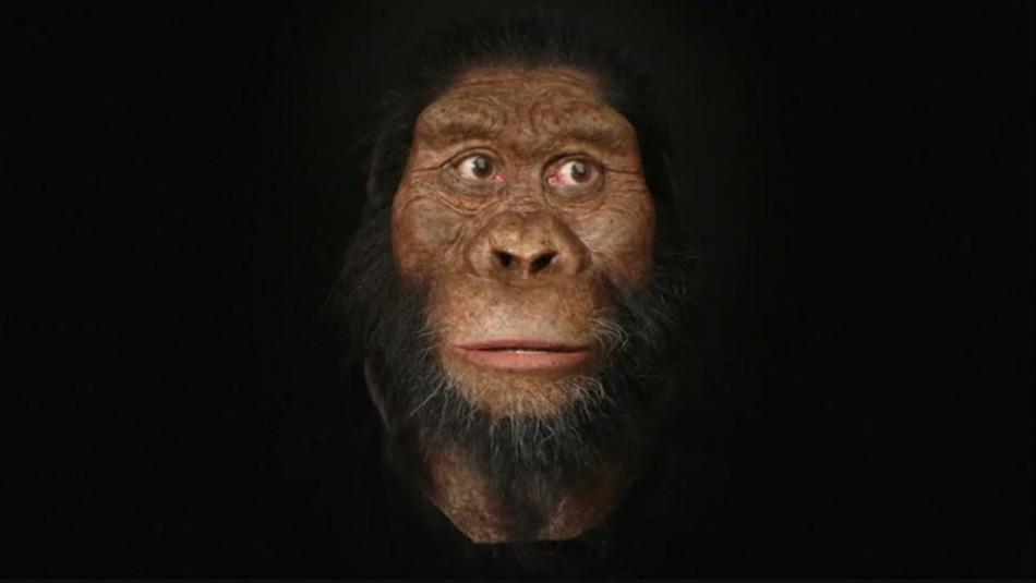 Histórico descubrimiento revela el rostro de un antepasado humano