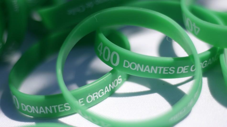 Día del donante: 368 trasplantes se han realizado este año en Chile