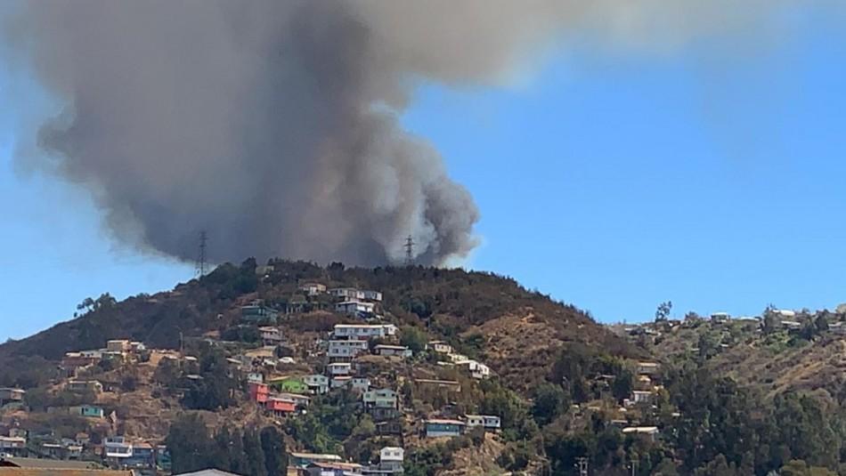 Incendio forestal afecta a cerro Rocuant de Valparaíso y amenaza a zonas pobladas